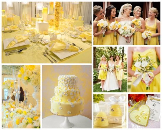 yellow and white event colors